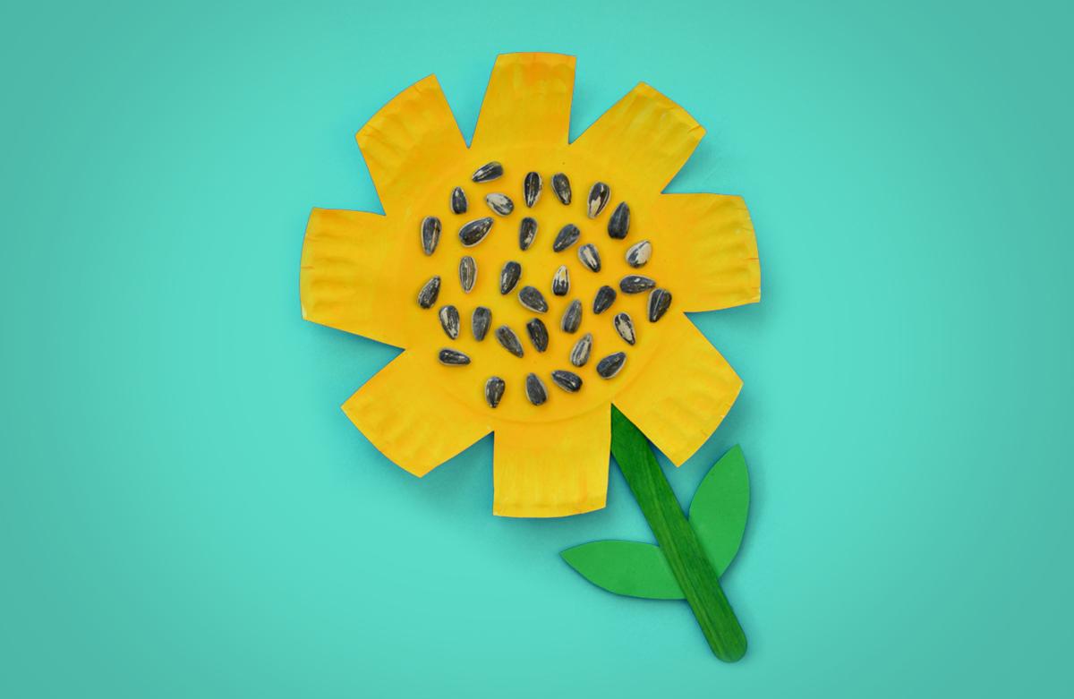 Sunflower Laboratorio Creativo per Bambini in Inglese tra Padova e Vicenza